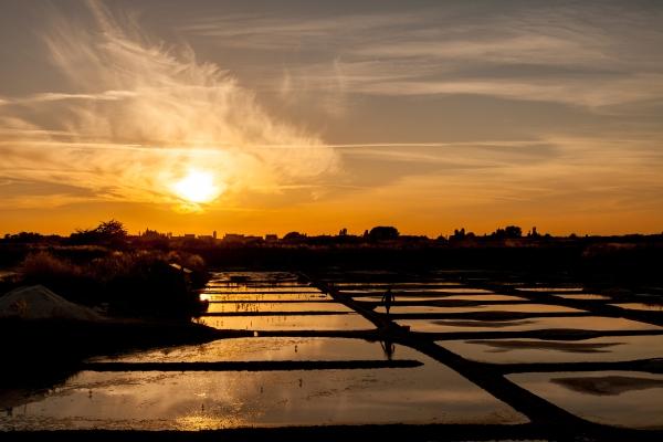 Marais salants au coucher du soleil
