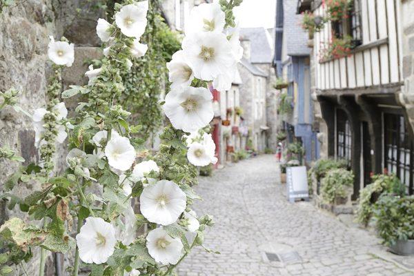 Rue de Dinan, Côtes d'Armor